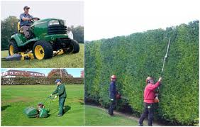 GARDEN SERVICES FOR WISBECH AREA CALL FOR A QUOTE